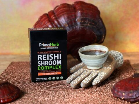How to find Powerful Mushroom Extracts